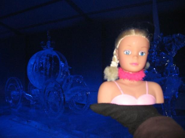 Miss Toronto dreams of icy luxury